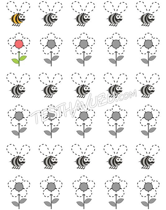 Çizgi Çalışması - Arı ve Çiçek