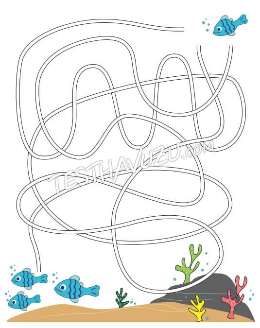 Labirent-Yol Bulma - Küçük Balık