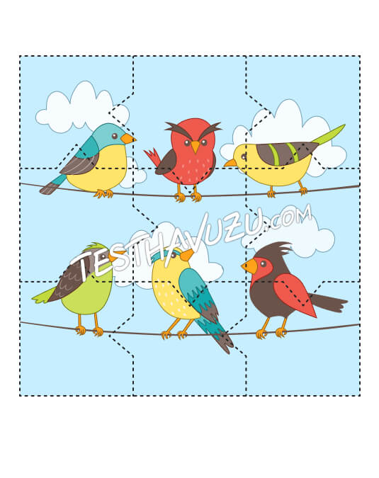 Yapboz Çalışması - Kuşlar