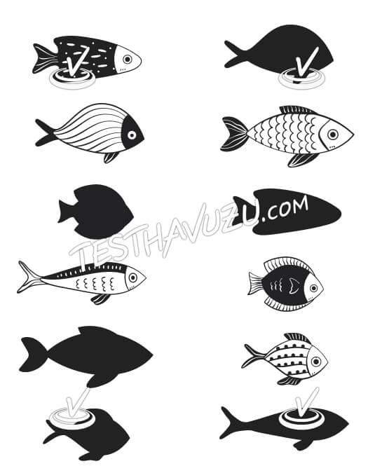 Eşleştirme - Balıklar