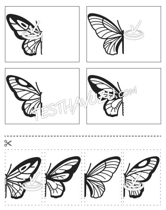 Eşleştirme - Kelebeklerin Kanatları