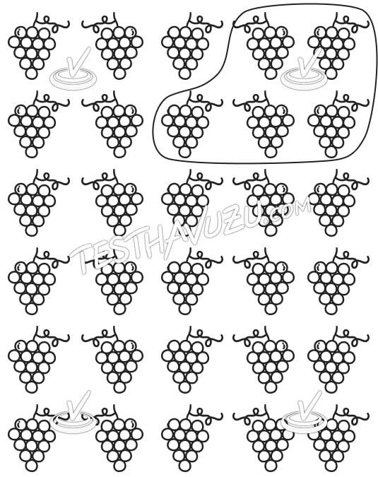 Beşerli Gruplama - Üzümler