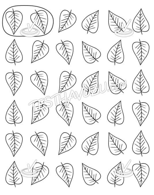 İkişerli Gruplama - Yapraklar